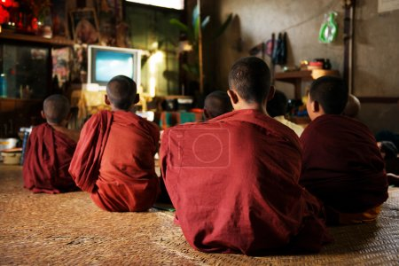 Photo for Group of Southeast Asian young little Buddhist monks enjoying tv show, Inle, Myanmar - Royalty Free Image