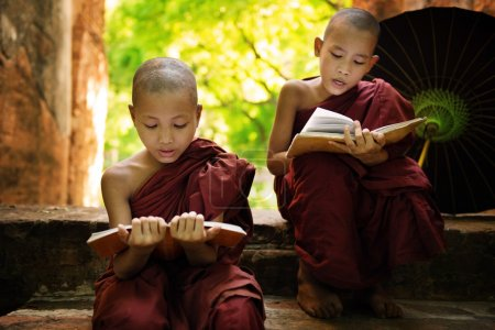 Photo for Southeast Asian Myanmar little monk reading book outside monastery, Buddhist teaching. - Royalty Free Image