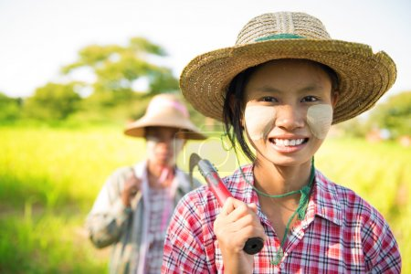 Photo for Southeast Asia Myanmar Asian traditional farmer planting or working in corn field - Royalty Free Image