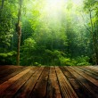 Wooden floor perspective and green forest with ray...