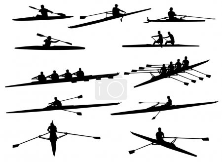 Illustration for Rowing silhouettes - vector - Royalty Free Image