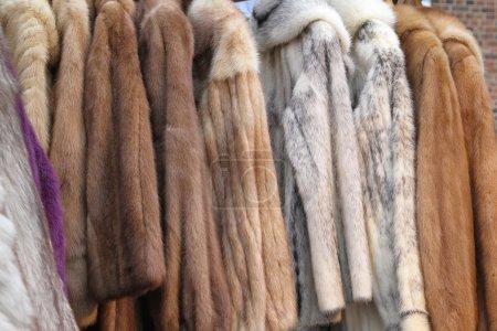 Photo pour Vestes et manteaux de fourrure animale réel véritable - image libre de droit