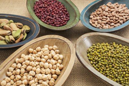 Photo for Variety of legumes (fava bean, mung bean, adzuki, pinto, chickpea) in colorful rustic wood bowls on canvas - Royalty Free Image