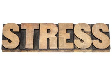 Stresswort in Holzart