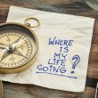 Where is my life going - an essential question or ...