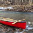 Red canoe with a wooden paddle on river shore in w...