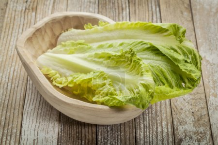 Fresh leaves of romaine lettuce in a rustic wooden...