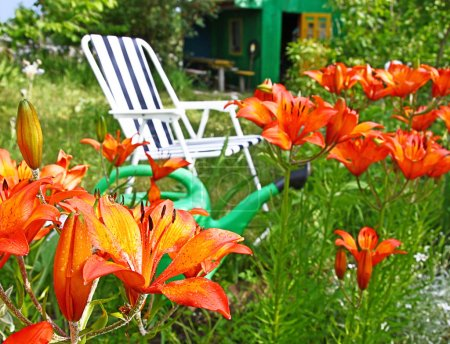 Folding chair on a background lilies