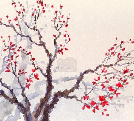 Photo pour Fond de printemps aquarelle dans un style japonais. les fleurs rouge vif et les bourgeons sur les branches d'un vieil arbre - image libre de droit
