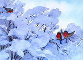 Watercolor winter scene. Bullfinch sitting on a snow-covered branches