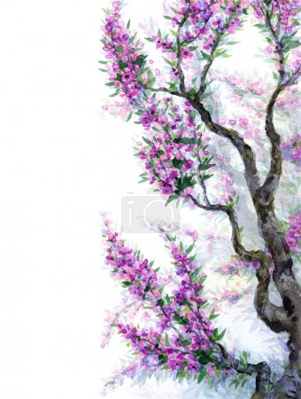Watercolor spring background. Purple flowers on tree branches