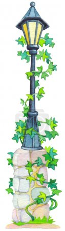 Watercolor illustration. Antique lantern ivy vine entwined