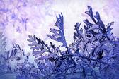 Astratto sfondo viola di urna cineraria