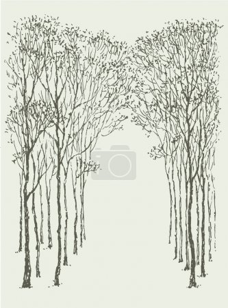 Vector background. Arc-shaped frame made of natural crowns and trunks of trees