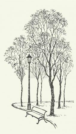 Vector landscape. Park bench near the lantern under trees