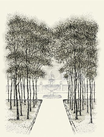 Vector landscape. Sketch park alley with a fountain
