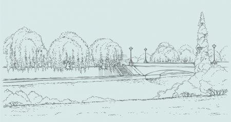 Vector landscape. Park with a bridge over the river and willows