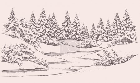 Vector winter landscape. Forest firs near frozen river