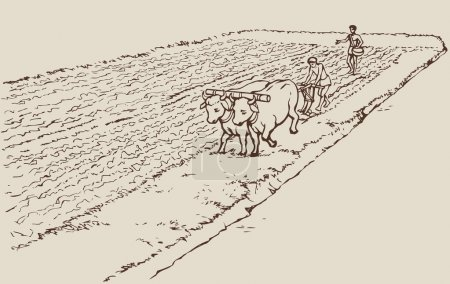 Vector drawing. Primitive agriculture. Peasants treated field