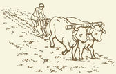 Vector drawing Primitive agriculture Peasant treated field
