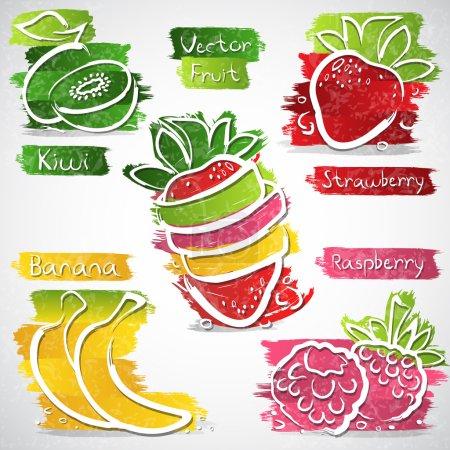 Illustration pour Illustration vectorielle de la collection d'icônes de fruits colorés - image libre de droit