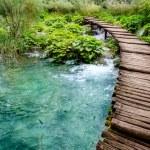 Wooden bridge...