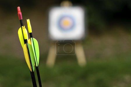 Archery- arrows close up...