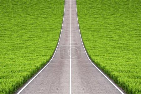 Photo pour Route asphaltée dans le champ avec herbe verte . - image libre de droit