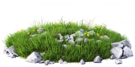 Photo for Natural grass arena on white background - Royalty Free Image