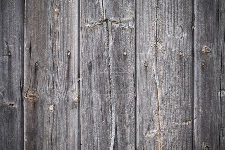Photo for Background of wooden knotted grey planks - Royalty Free Image