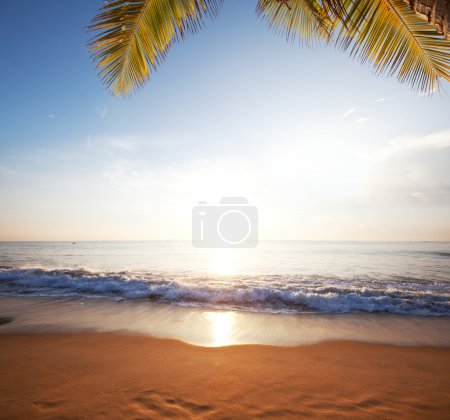Photo for Deserted beach - Royalty Free Image