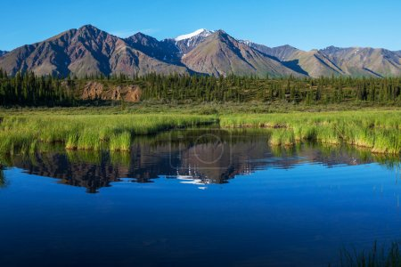 Photo for Serenity lake in tundra on Alaska - Royalty Free Image