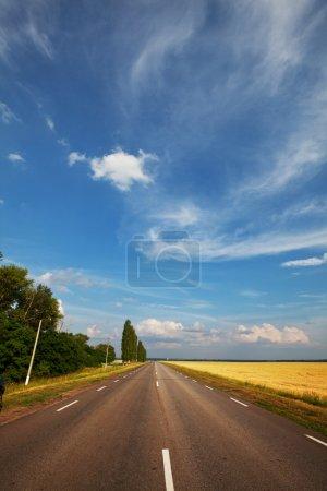 Photo pour Route dans les champs - image libre de droit