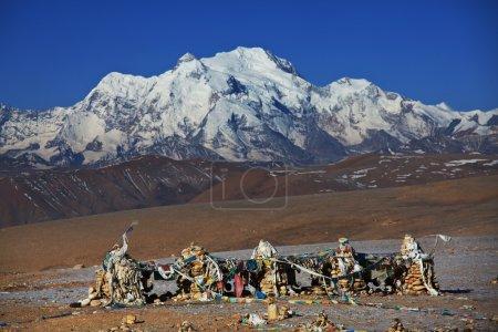 Photo for Shigatse monastery in Tibet - Royalty Free Image