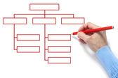 Organizační diagram