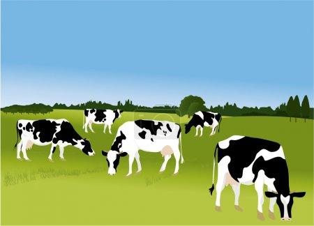 Illustration pour Nature agriculture fond avec des vaches illustration vectorielle - image libre de droit