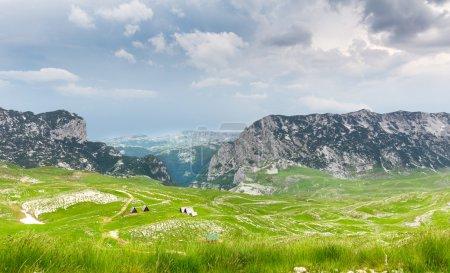 Photo pour Paysage de montagne. Parc national dans les montagnes du Monténégro, europe - image libre de droit