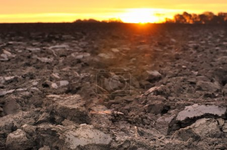 Photo for Field of freshly turned topsoil forming clods of earth at twilight - Royalty Free Image