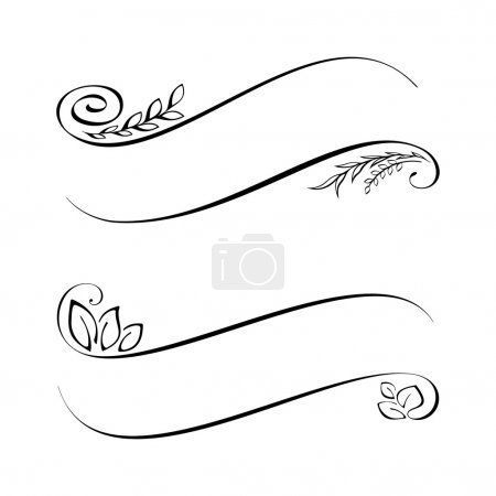 Illustration for Calligraphic design elements. Vector Illustration - Royalty Free Image
