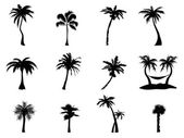 Black Silhouette of palm trees on white background