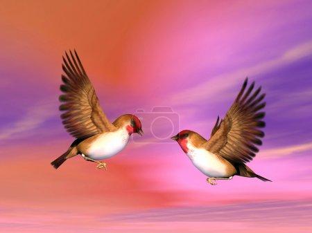Scarlett finch birds couple - 3D render