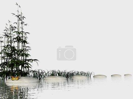 Photo pour Bambous dans l'eau près de marches de pierres et papillon en fond blanc - image libre de droit