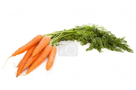 Photo for Bunch of fresh carrots isolated on white background - Royalty Free Image