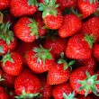 Fresh ripe perfect strawberry - Food Frame Backgro...