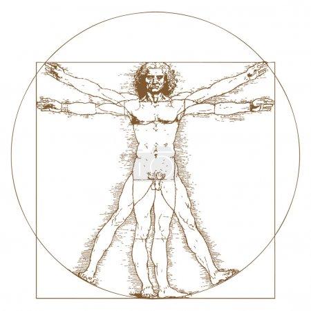 Vitruvian Man by Leonardo Da