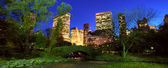 NYC Central Park at night