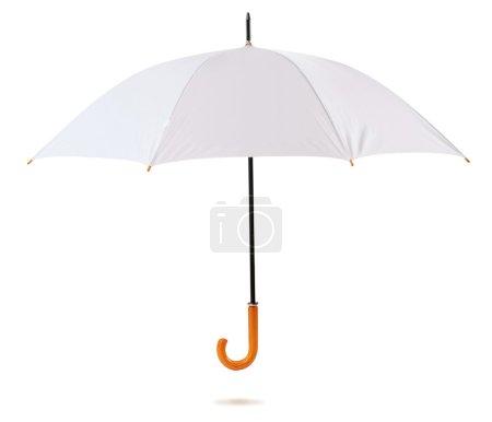 Umbrella. Isolated