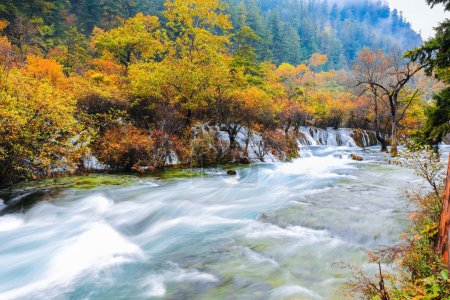 Beautiful jiuzhaigou valley national park ,forest ...