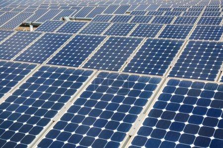 Foto de Paneles solares fondo primer plano, energía limpia cóncavo - Imagen libre de derechos