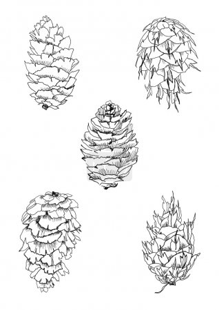 Cones set